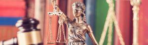 Over Advocatenkantoor Warmerdam